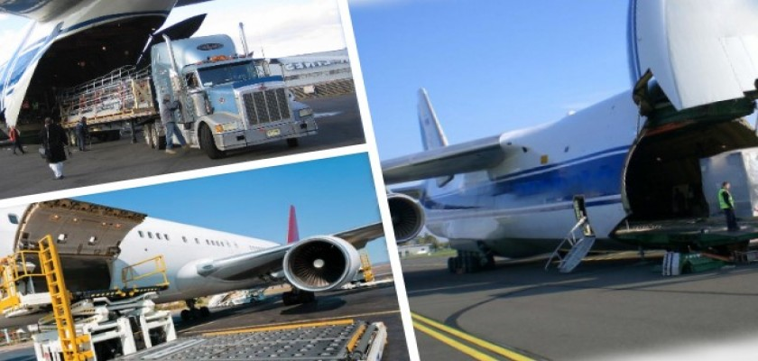 Lojistikte Ambalajlama Ve Çevre Dostu Paketleme Hizmetleri
