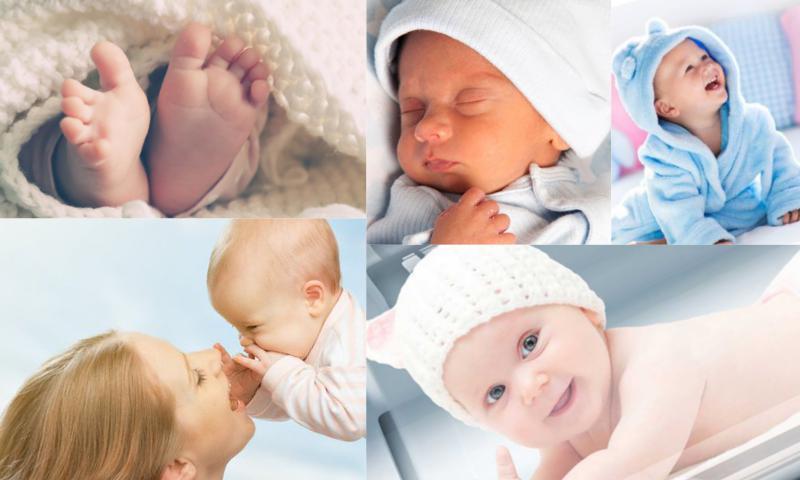 Tüp Bebek Tedavisi